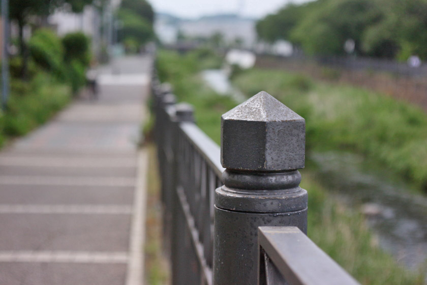 川沿いの柵