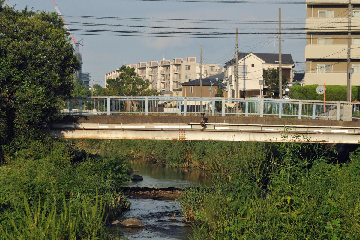 タムロンZ210作例 橋