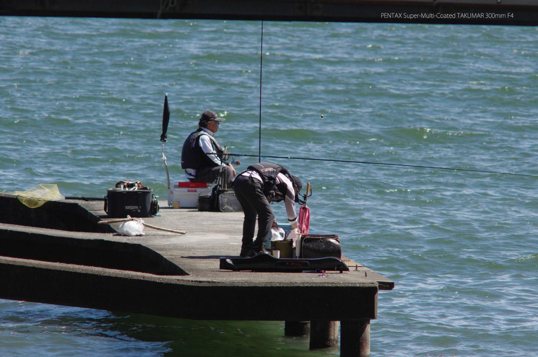 TAKUMAR 300mm F4 作例 釣り人