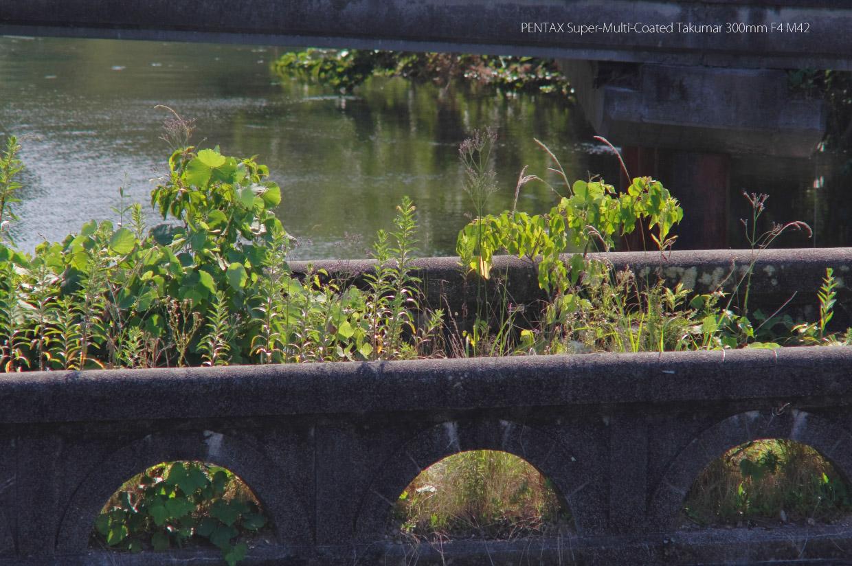 TAKUMAR 300mm F4 作例 古い橋